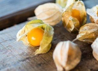 Frutas que no conocías y deberías conocer: physalis