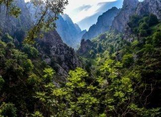 Cinco Parques Nacionales españoles para respirar aire fresco